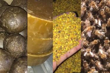 Продукция пчеловодства и иная продукция